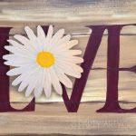 C Daisy-Love