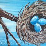 c birds nest copy
